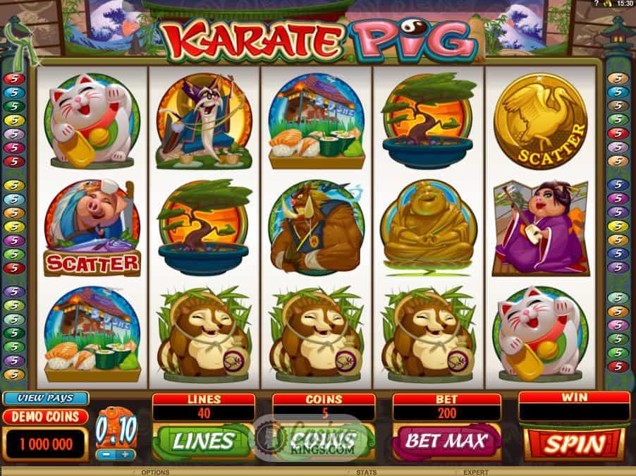 Get trained from Karate Pig
